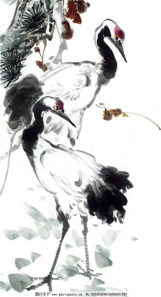 水墨丹顶鹤 丹顶鹤 水墨 写意 中国风 一对 绘画书法 文化艺术 设计 4