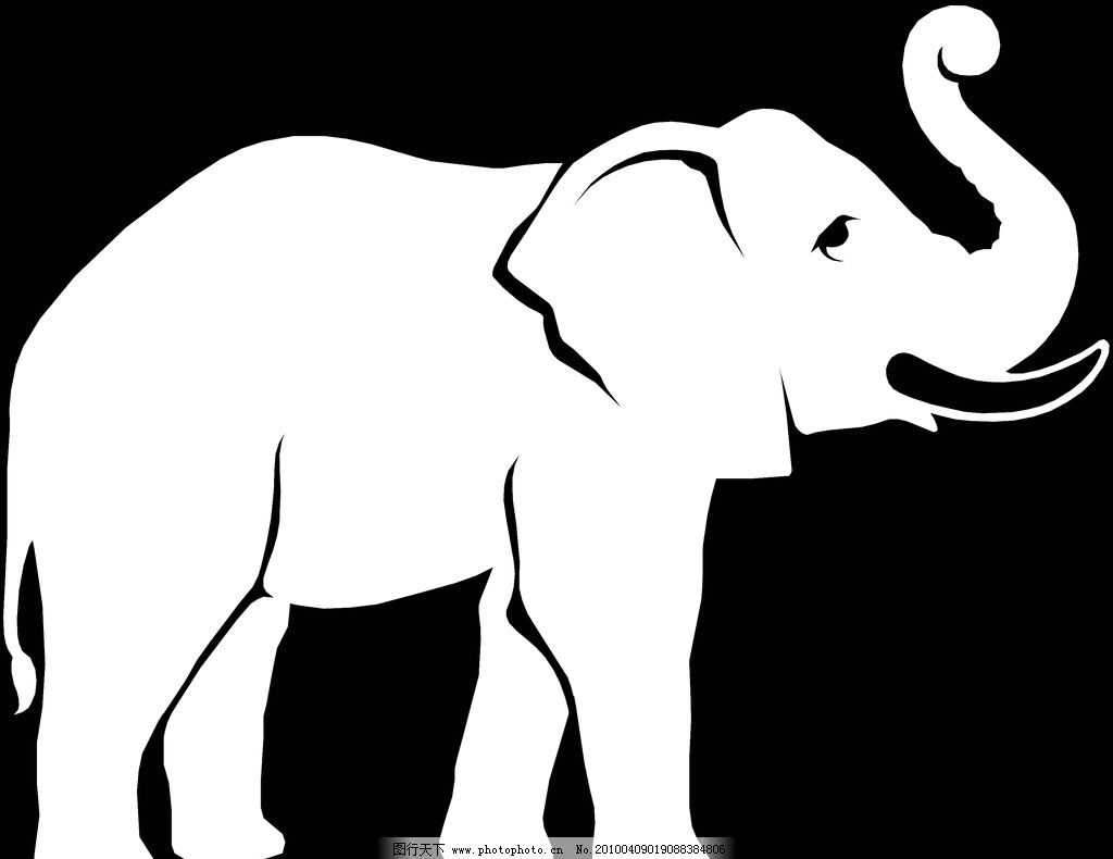 白象 吉象 大象 象 泰国象 绘画书法 文化艺术 设计 300dpi jpg