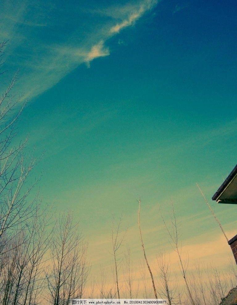 蓝天 白杨树 白云 房子     天空 自然风景 自然景观 摄影 180dpi jpg