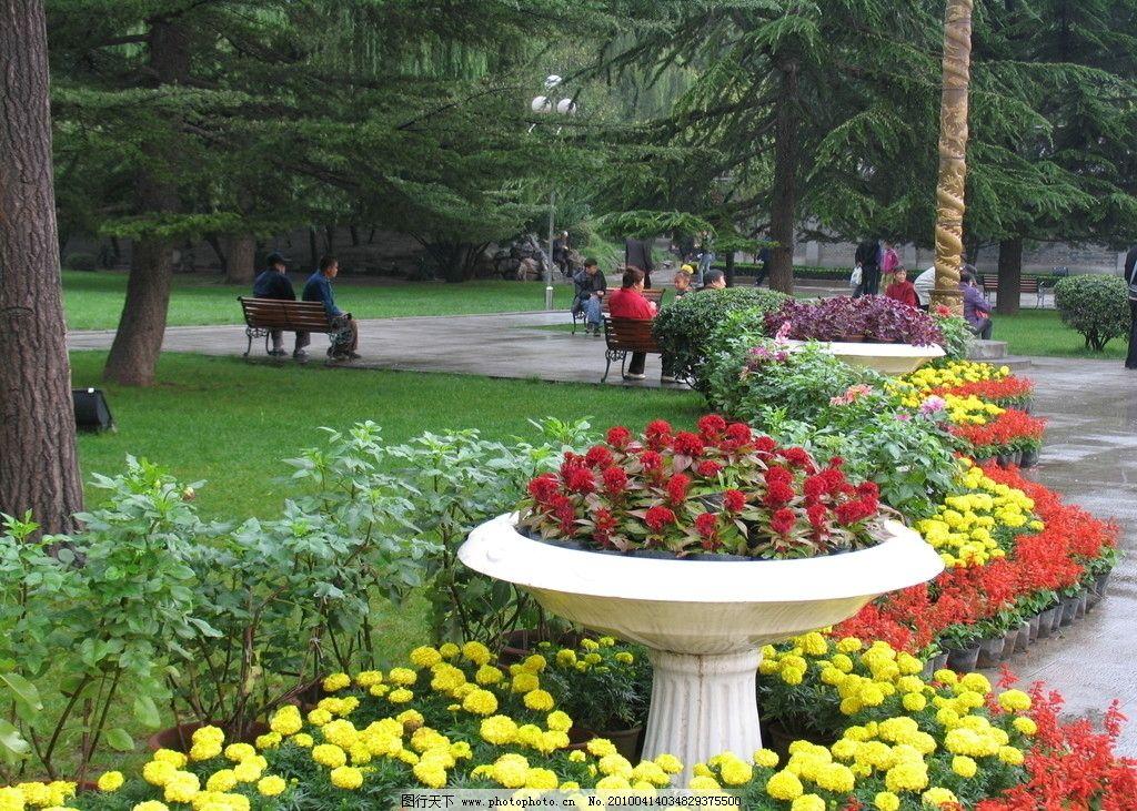 公园景色 花朵 树木 旅游景观 美丽鲜花 自然风景 自然景观 摄影 180d