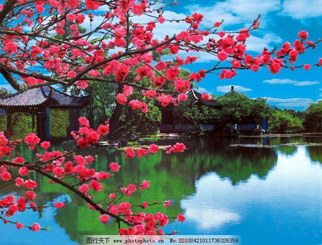 春天 风景 花 山水 山水 背景 风景 水 花 春天 家居装饰素材 山水