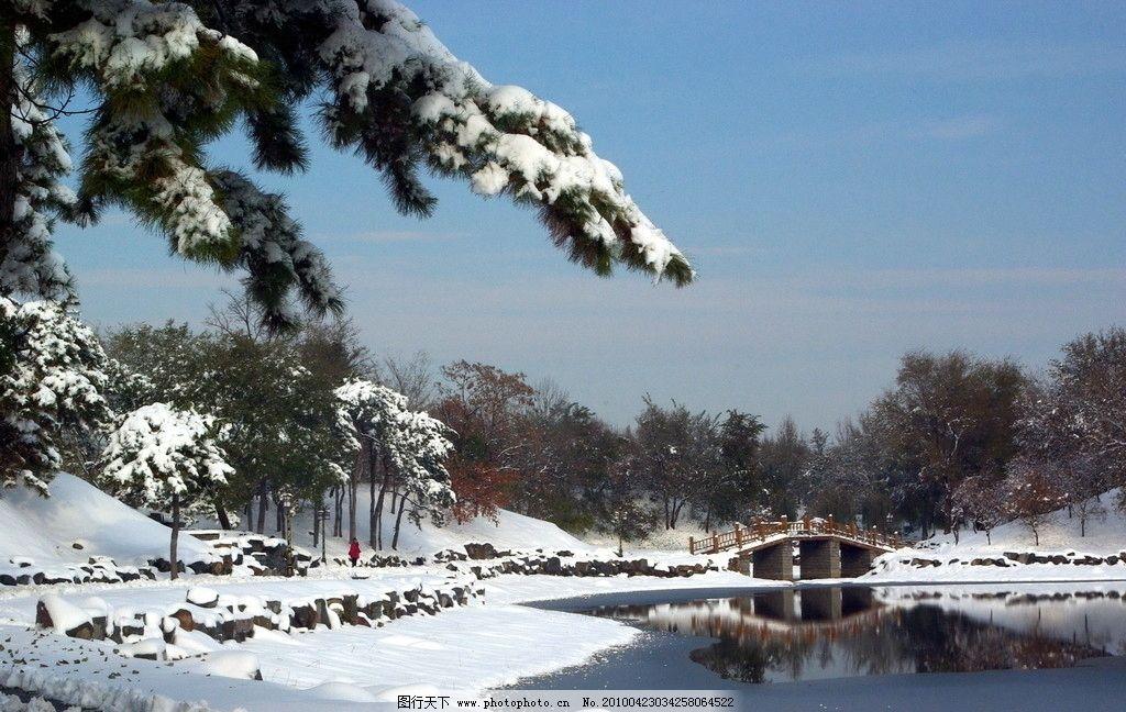 圆明园雪景 圆明园 雪景 松树 河流 拱桥 树林 图片素材 摄影素材