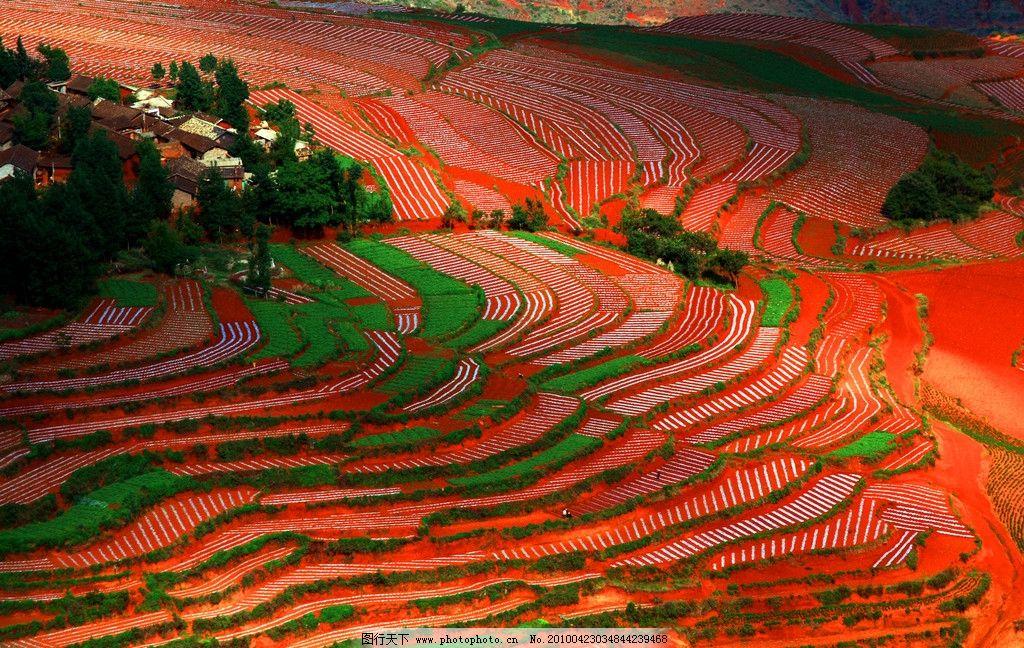 云南红土地 云南景色 红土地 云南风光 红色 风景 阶梯田 云南旅游