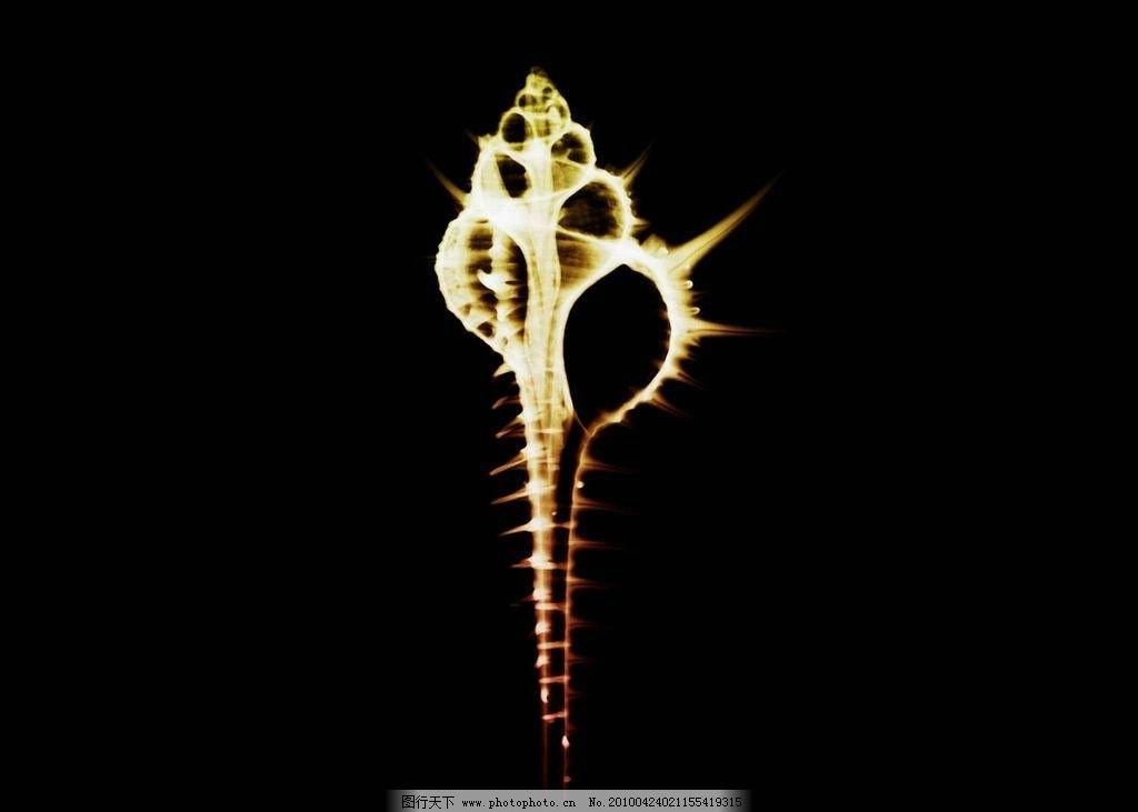 仿生海螺设计构成