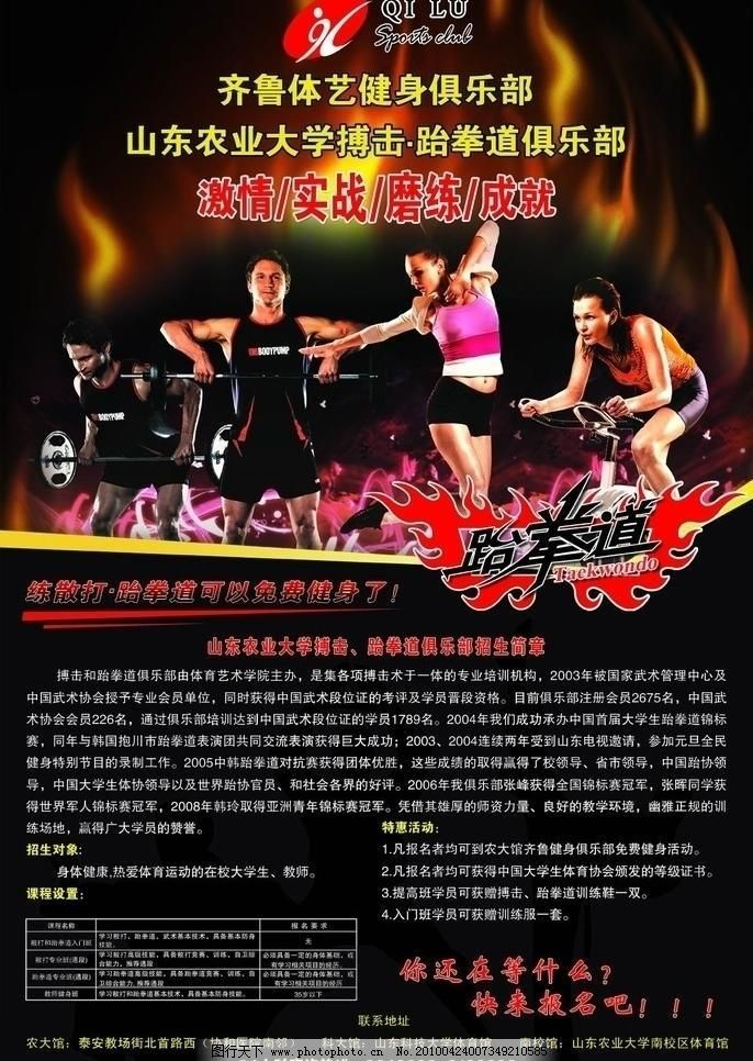 健身海报素材下载 健身海报模板下载 健身海报 健身 跆拳道 体育 单