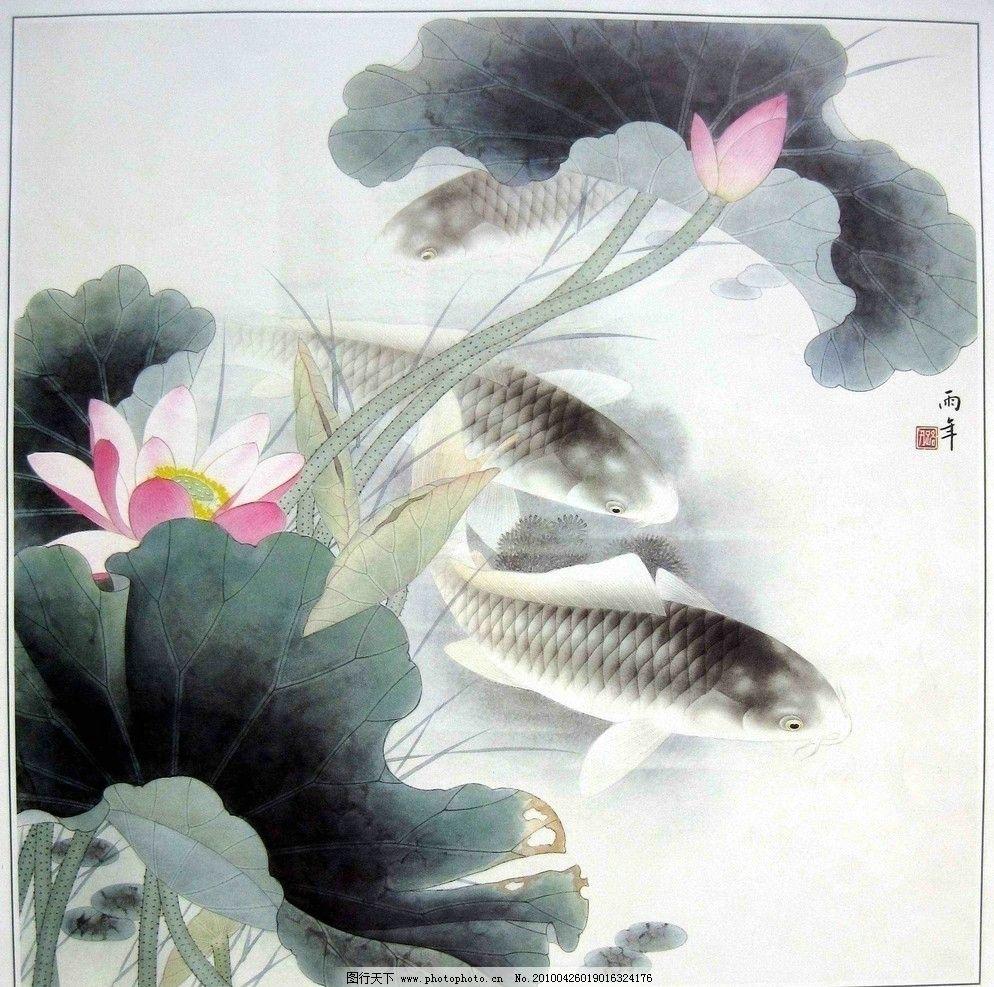 国画荷花与鲤鱼图片