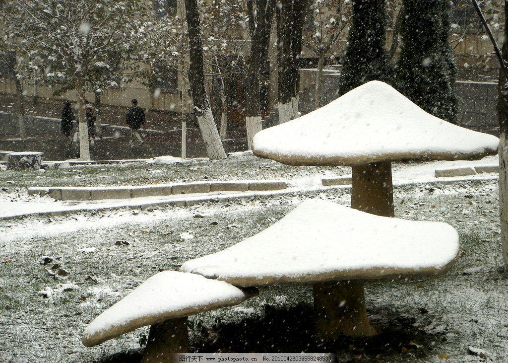 下雪 雪景 路灯