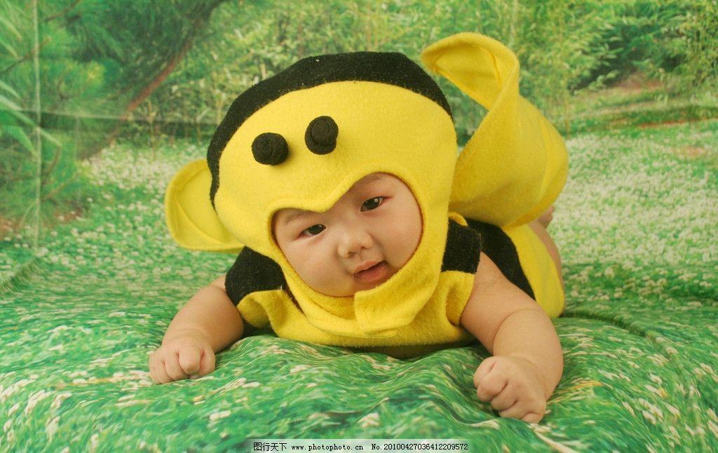 可爱的小蜜蜂在花丛