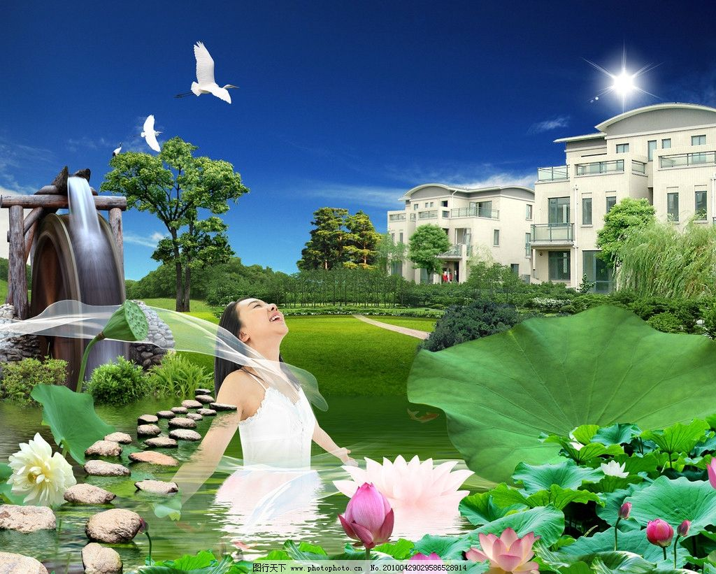 水中花园别墅 水中乐园 池塘 荷花 莲花 房地产 地产广告 广告设计 dm