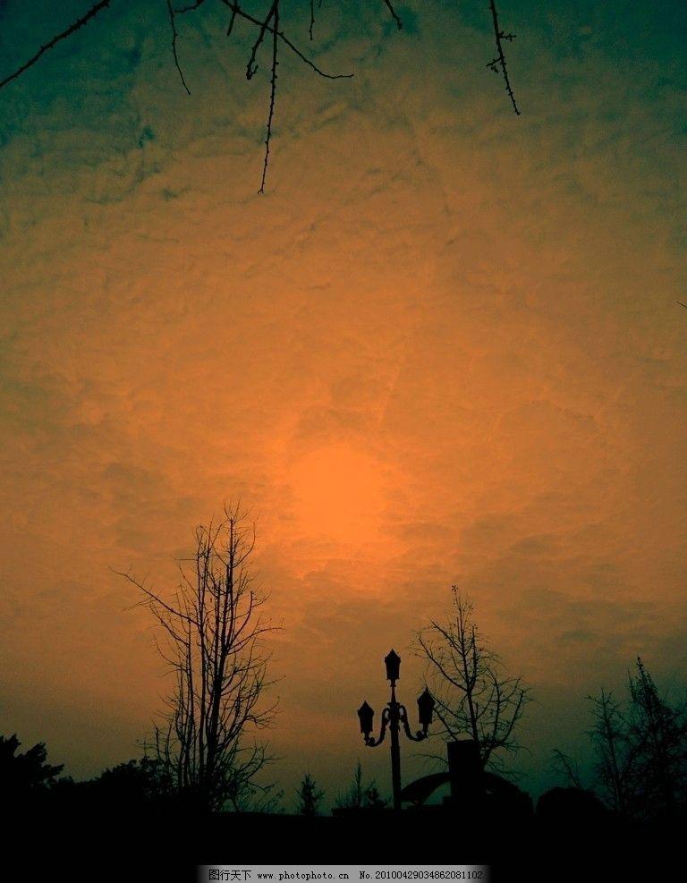 天空 太阳 树木 路灯 大门     摄影素材 自然风景 自然景观 摄影 180