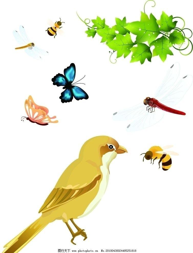 动物 矢量 昆虫 鸟 蝴蝶 蜜蜂 野生动物 生物世界 ai