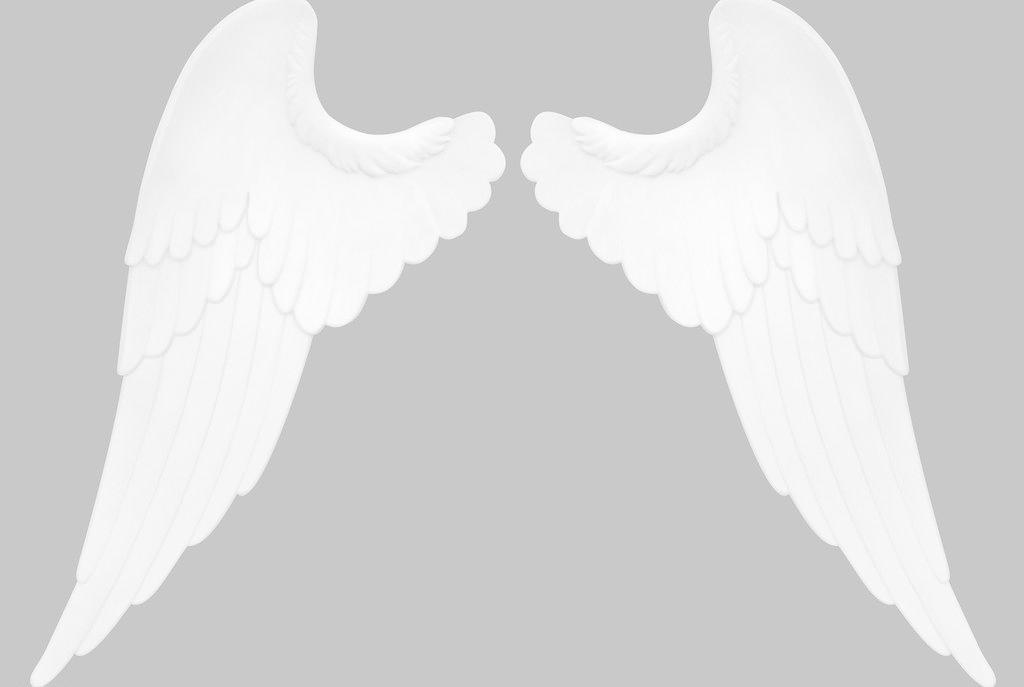 翅膀免费下载 300dpi jpg 翅膀 动物 其他 设计 生物世界 天使翅膀 翅