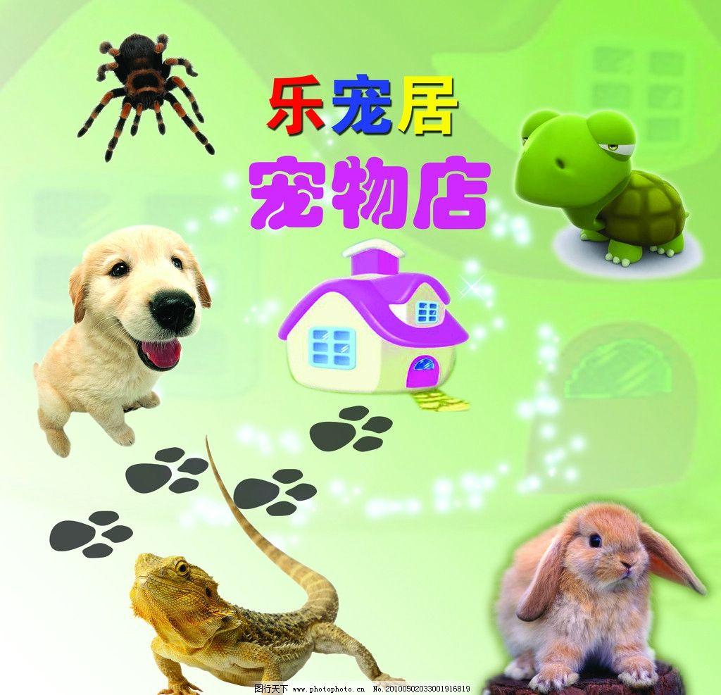 宠物 商店 狗 兔子 小动物 家 爱心 乌龟 小房子 蜥蜴 脚印 小狗 小兔
