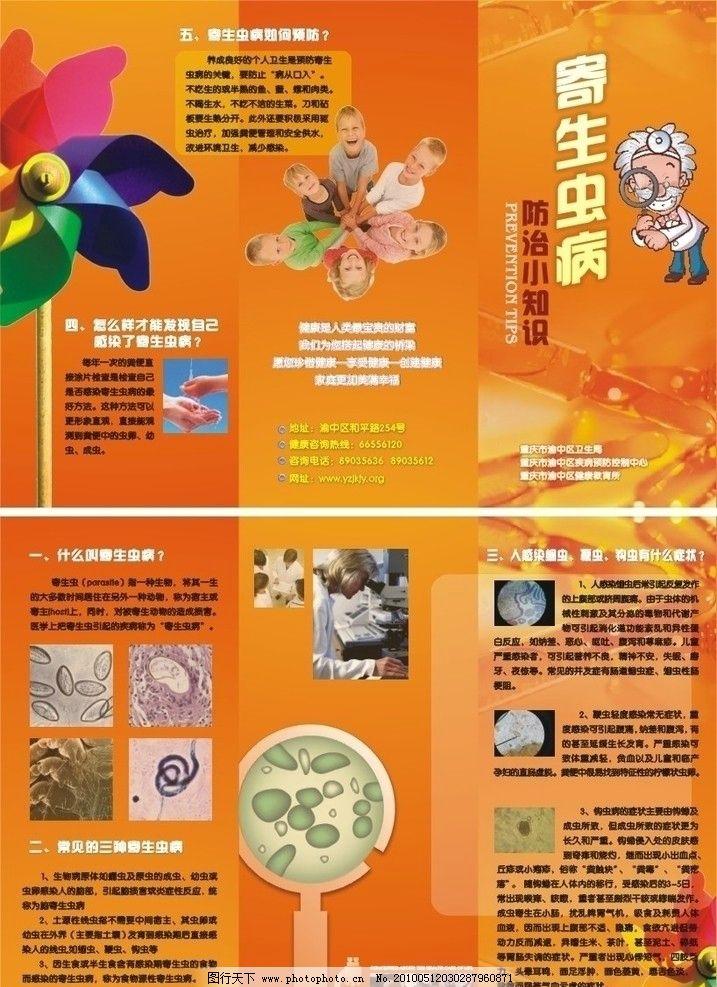卫生知识 医学 儿童 卫生防疫 寄生虫防治知识 矢量