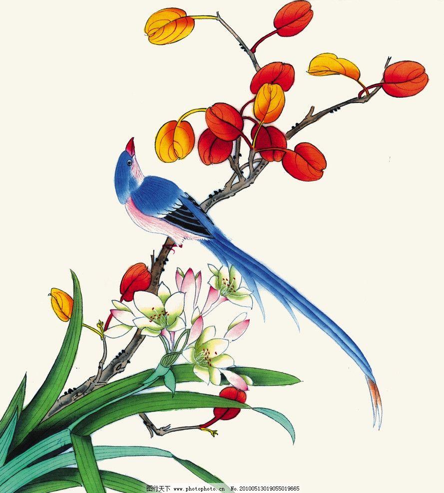 兰栖画眉 兰花 水仙 叶子 工笔花鸟 中国画 水墨画 画眉 杜鹃 玉兰