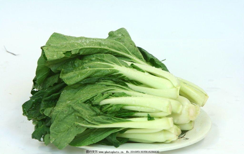 黑叶小白菜图片