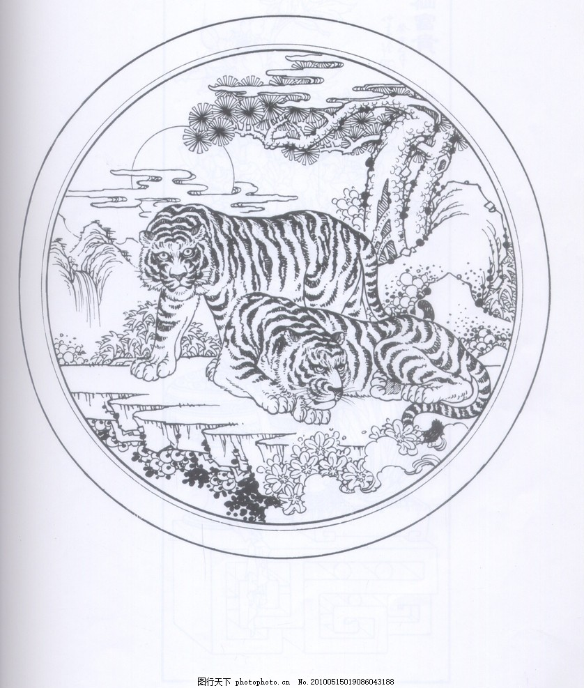 双虎图 老虎 树 石头 线描 工笔画 黑白 白描 线条 陈金莺