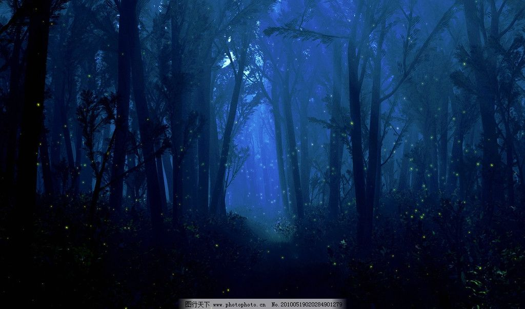 深林图片,黑夜 背景 壁纸 森林 背景底纹 底纹边框-图