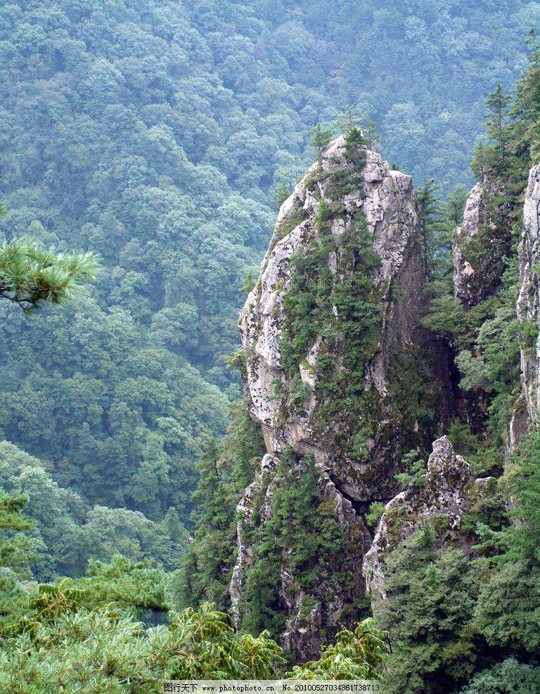 大山 树林 原始大山 原始森林 美景 林海 嵩县风景 摄影