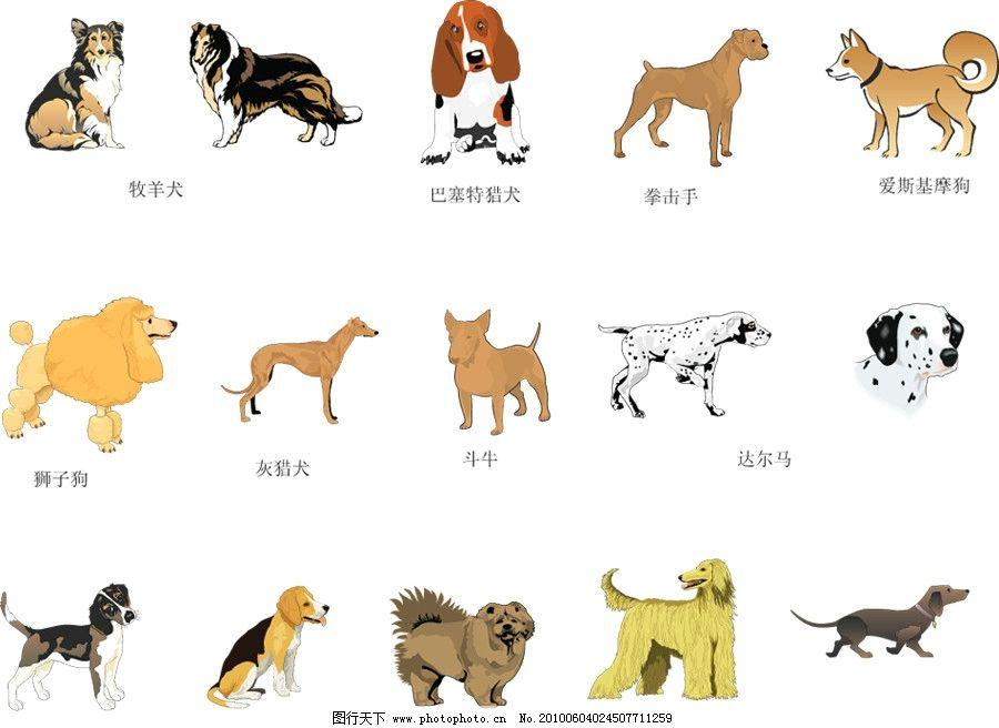 手绘狗 动物 狗 卡通狗