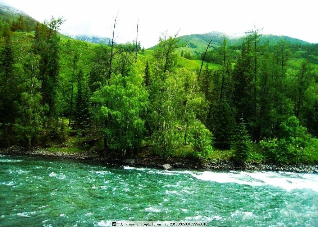 新疆风光 风景 自然 原野