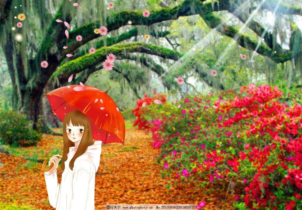 雨后的阳光树林小道图片