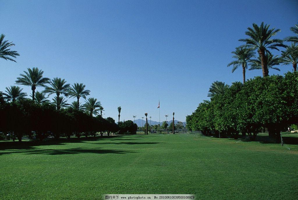 绿野 草地 花园 广场 蓝天 风景区 森林 宽阔的草地 环保设计