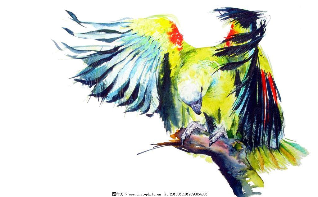 鹦鹉 绘画书法 文化艺术 设计 72dpi jpg