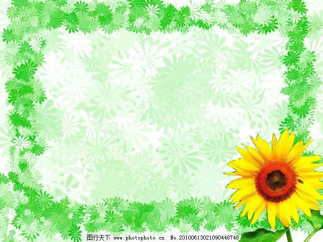 向日葵背景 雏菊背景 向日葵背景 可爱花朵边框 图片素材 底纹边框
