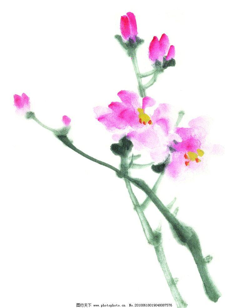 水墨画 水墨 花卉 荷花 红色 素材 绘画书法 文化艺术 设计 300dpi