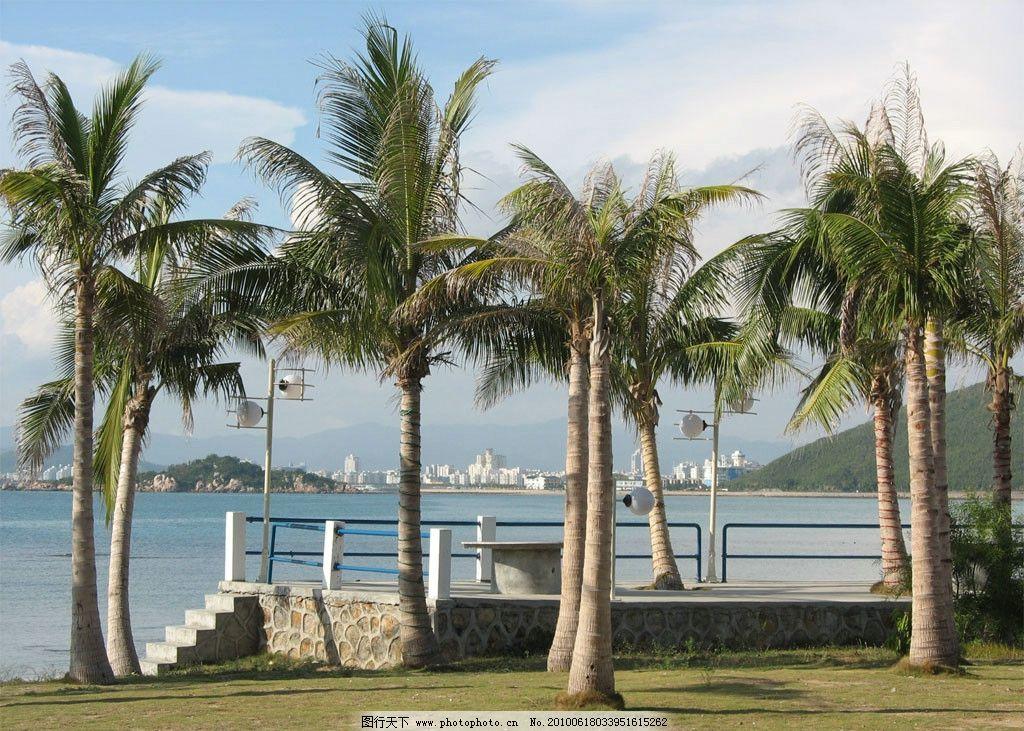 海南三亚 海南 三亚风光 海边 椰树 国内旅游 旅游摄影 摄影 100dpi