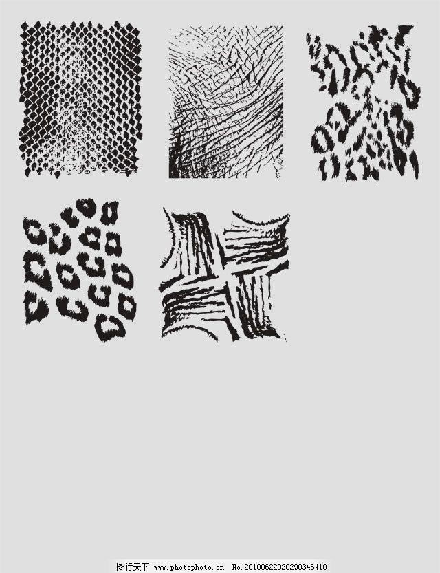 野生 动物 皮毛 皮肤 皮草 豹纹 大象 犀牛 蛇皮 鳞片 蟒皮 蟒 肌理