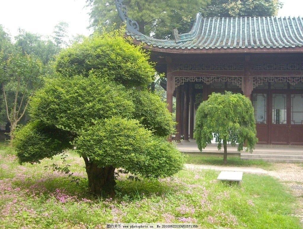 树木 自然风景 风景 建筑 古老建筑 解放公园 国内旅游 旅游摄影 摄影