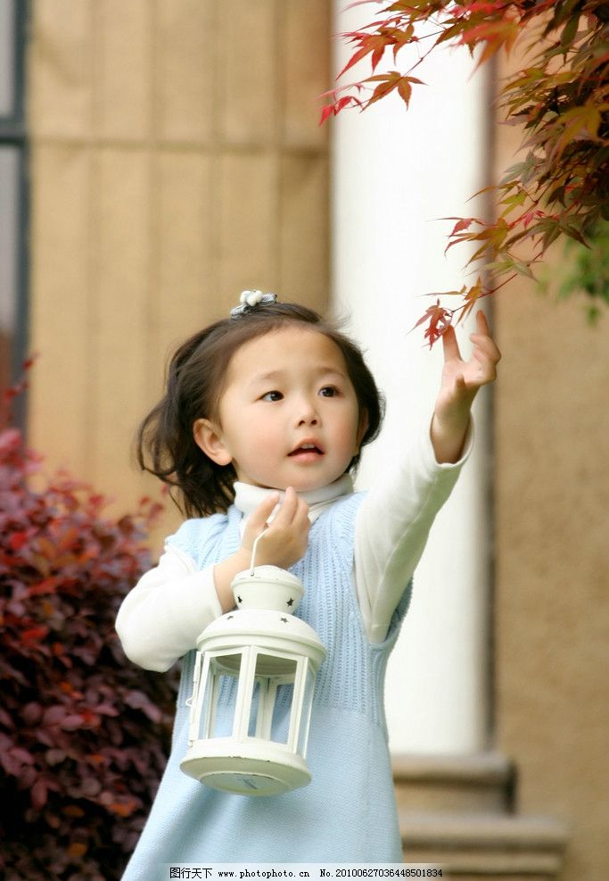 小女孩 伸手摘枫叶 可爱 儿童幼儿 人物图库 摄影 72dpi jpg