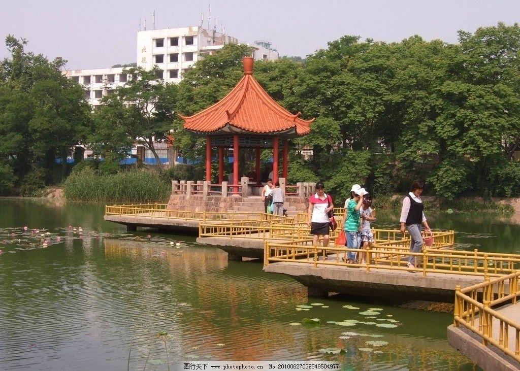 湖中小亭 青岛 中山公园 小西湖 湖中亭 小桥 弯曲 游人 高楼